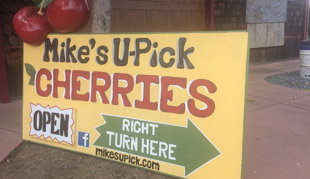 Mikes Upick street sign