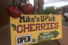 Follow the signs to Mike's Upick!